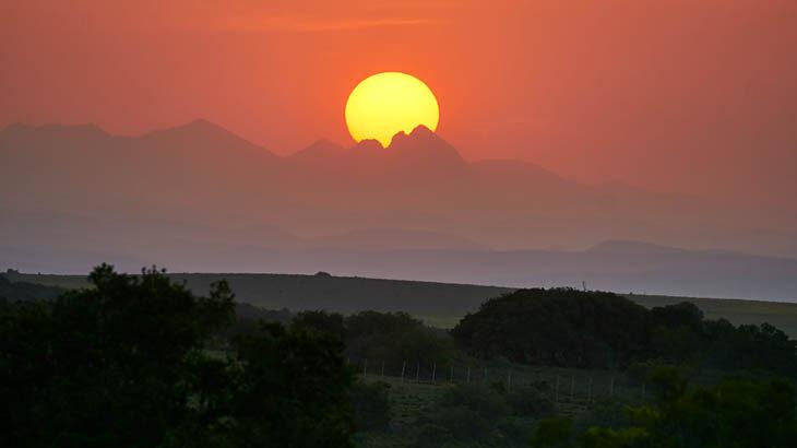 Safari, Schotia Private Game Reserve, Sonnenuntergang, Garden Route Touren