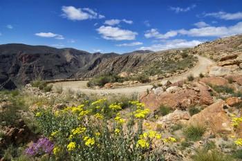 Kleine Karoo, Swartberg Pass, Gardenroute Tour